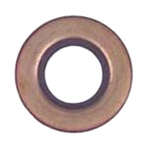 BE11-150 - Inner Rear Axle Seal & Motor