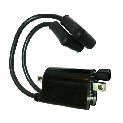 IG22-380 - Dual Ignition Coil